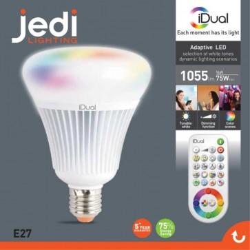 Ampoule G100 Led 16W iDual A E27 1055 lumens
