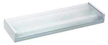 Réglette Fluo économie d'énergie Prismatik 2x 18W Starlicht Blanc