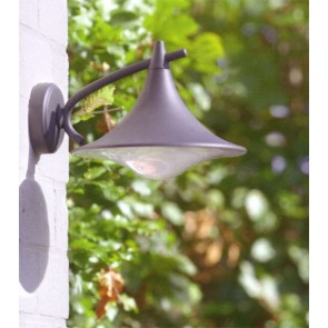 Applique lanterne descendante extérieure anthracite E27 15W  eco lampe incl CEDAR PHILIPS